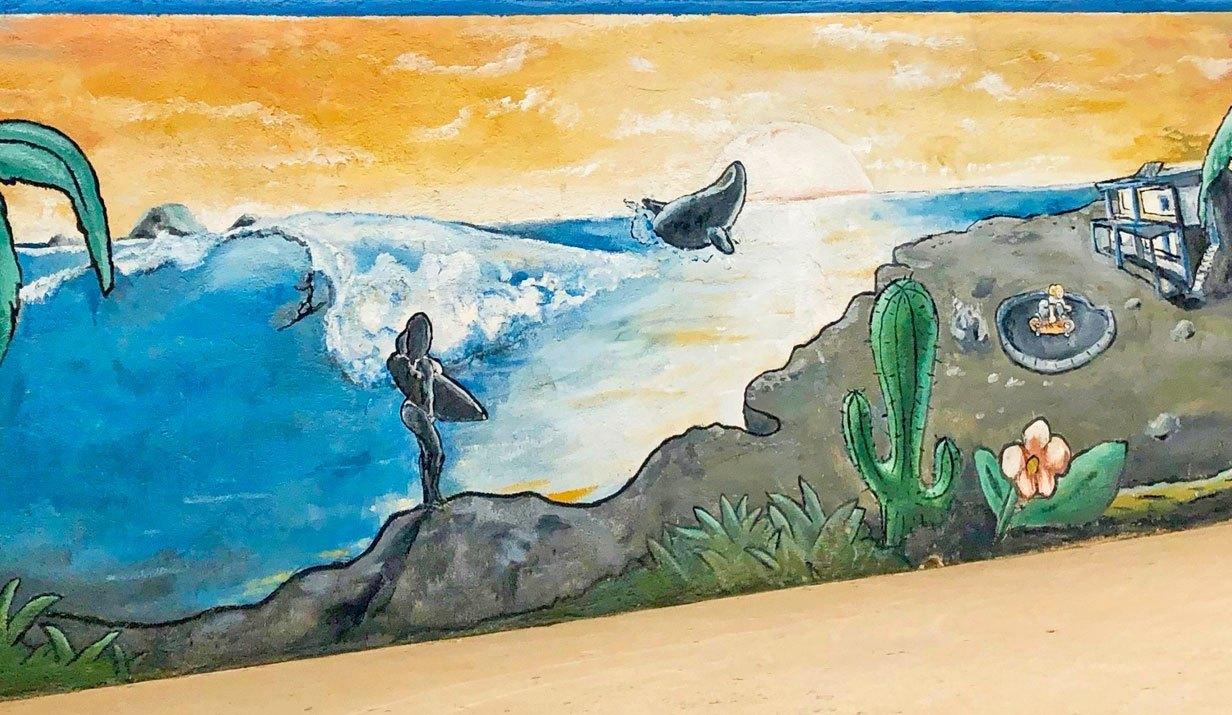 voyage surf baja